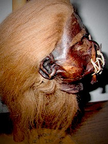 Red Wooly Hair Shrunken Head